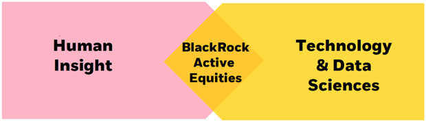 BlackRock's active equity strategies are fueled by combining human insights with innovative technologies