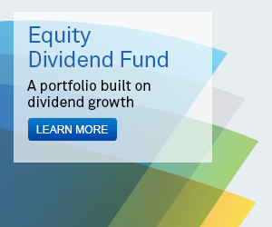 Equity Divivend Fund