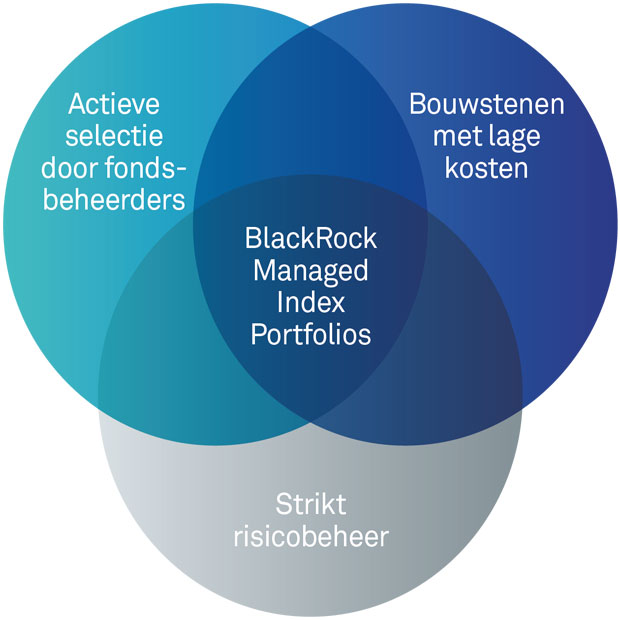 BlackRock managed index portfolios