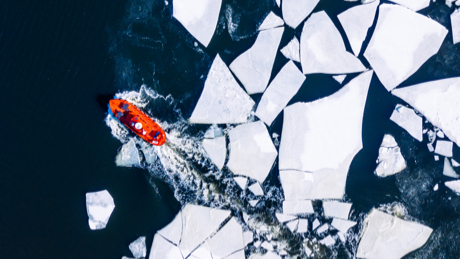 We are a global team with a local presence